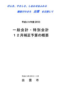平成25年度(2013)12月補正予算の概要(280KB)(PDF文書)